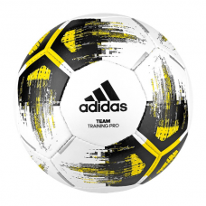 adidas Team Training Pro 233